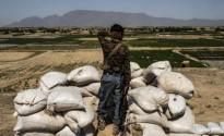 خط النفاذ لأولويات إيران الجيو-سياسية في أفغانستان