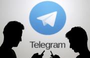 حجب تليغرام.. بين الأمن القومي وتكلفة الفرص الضائعة