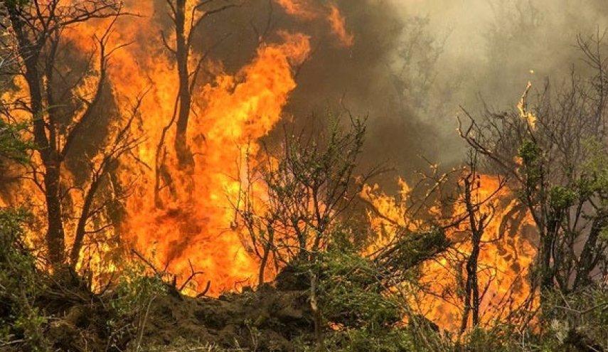 استمرار-الحرائق-في-مراتع-باوه-لليوم-السابع-على-التوالي