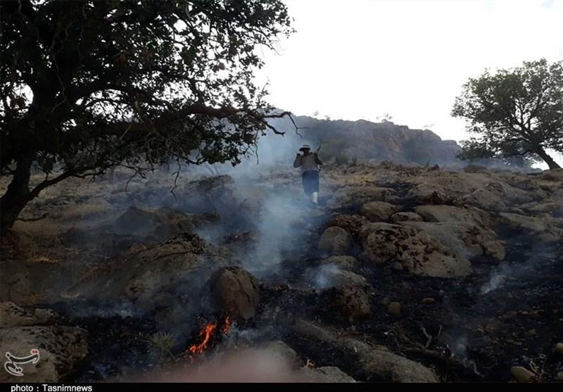 6 حرائق في مراعي همدان.. واستمرار اشتعال النيران بغابات دمتشنار