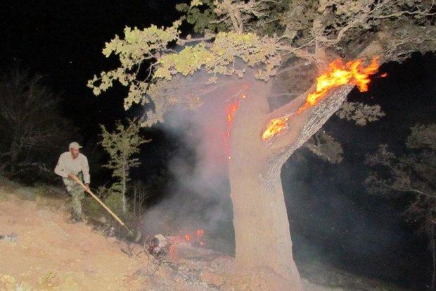 اندلاع حرائق في غابات كيالان بمحافظة لورستان
